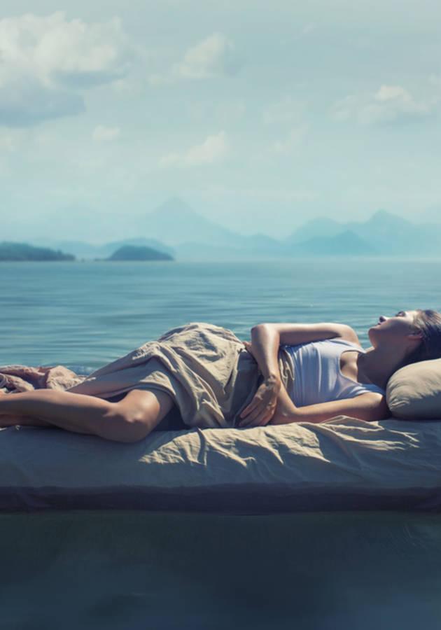 The Secret Life of Sleep Resumo