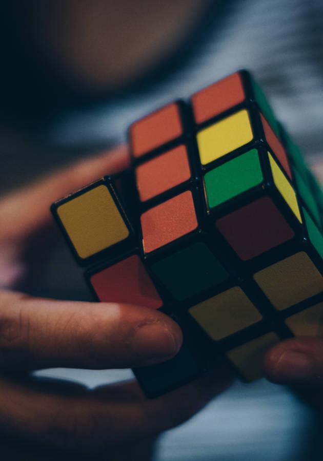 O Código da Inteligência Resumo