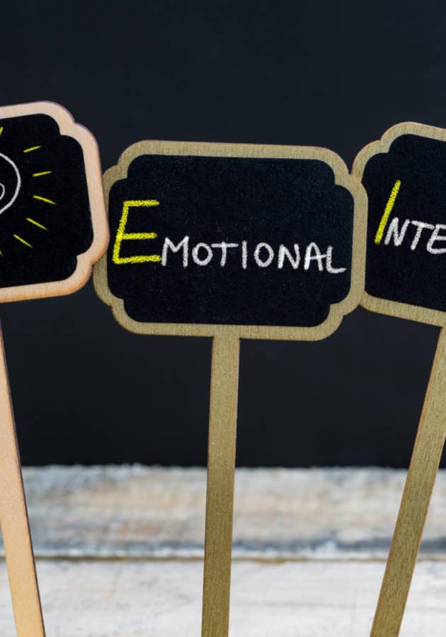 Inteligencia Emocional Resumen