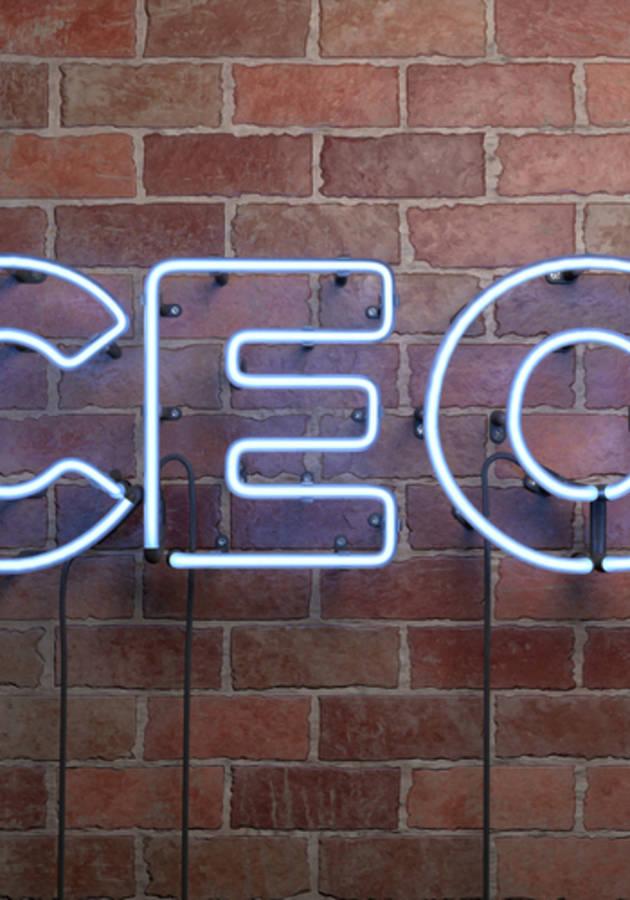 O Código CEO Resumo
