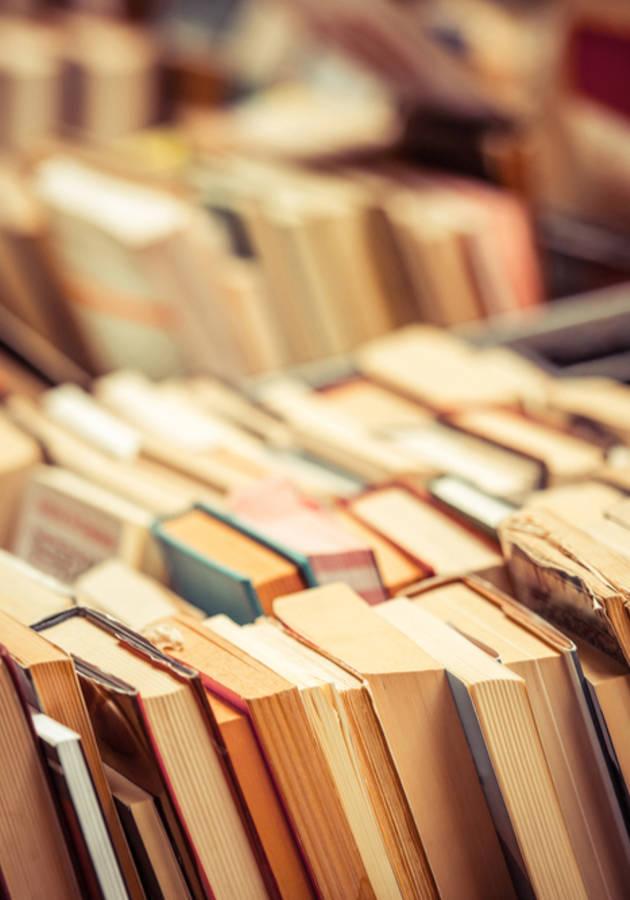 Cómo Leer Libros Resumen