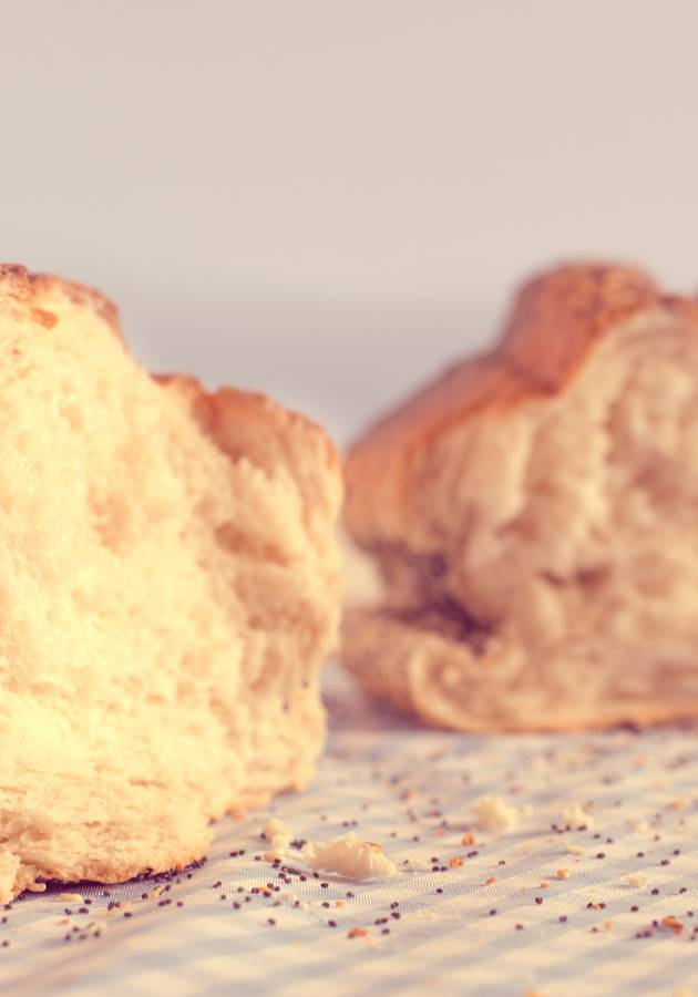 Wheat Belly Summary