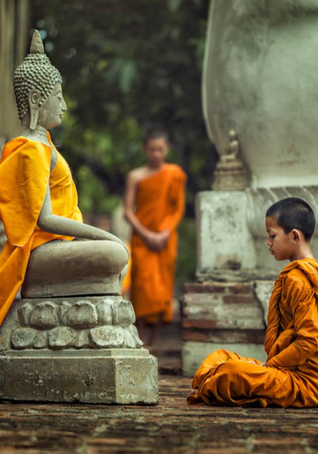 El Buddha Entra a un Bar Resumen