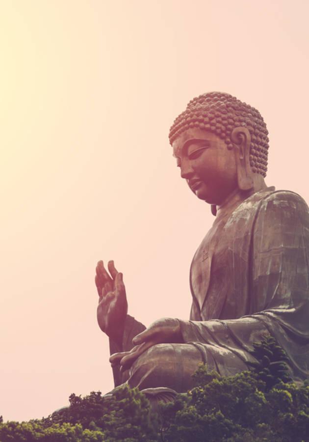 Budismo en la Mesa del Bar  Resumen