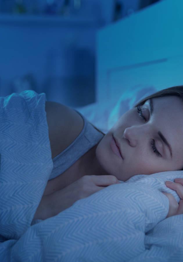 Por Que Nós Dormimos Resumo