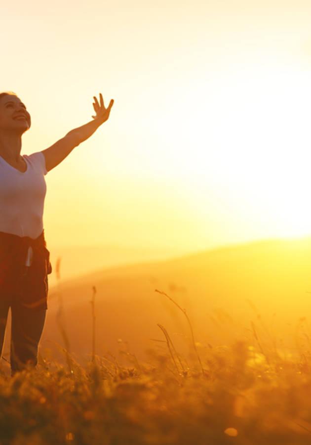 12 Regras Para a Vida Resumo