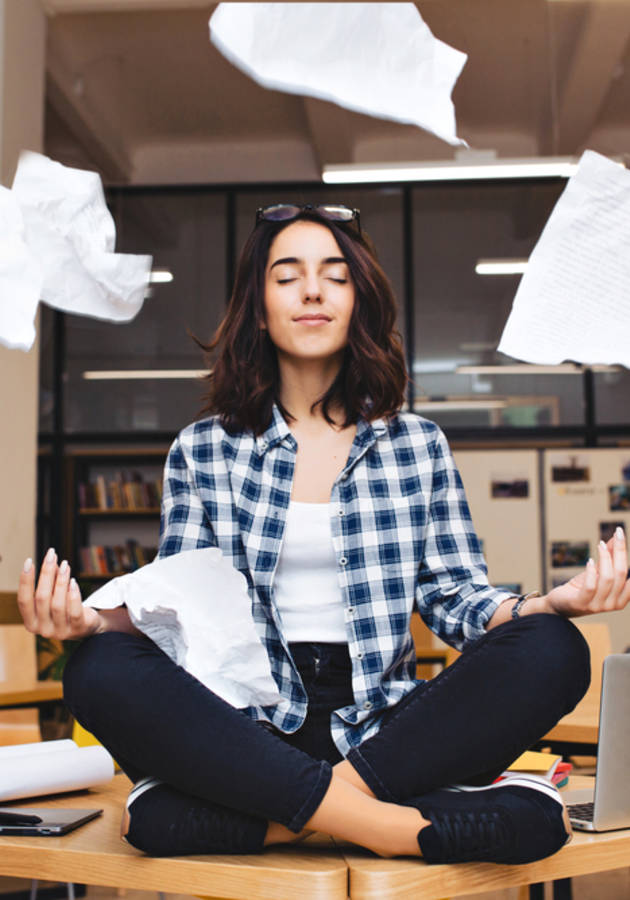 Meditação Para Céticos Ansiosos Resumo