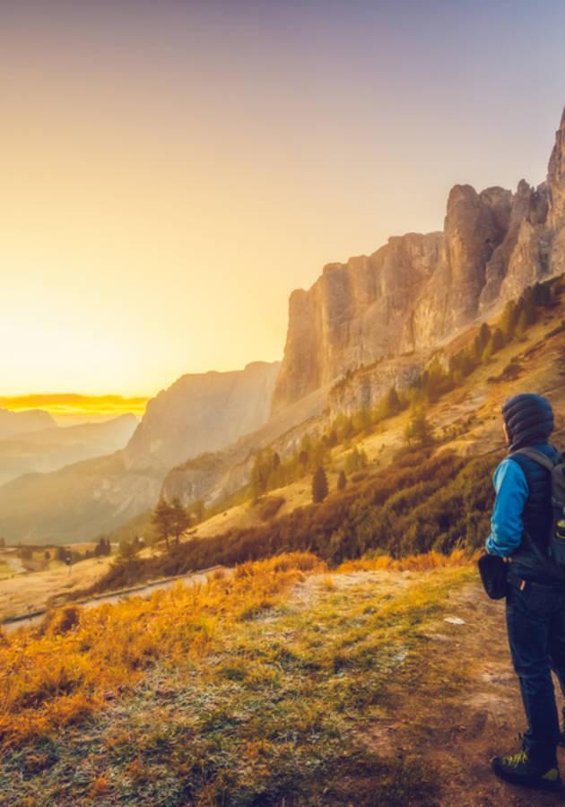 Braving the Wilderness Summary