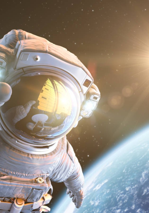 An Astronaut's Guide to Life on Earth Summary