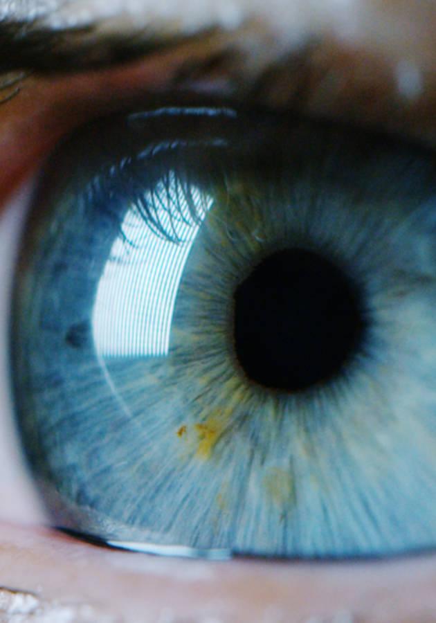 Inteligência visual Resumo