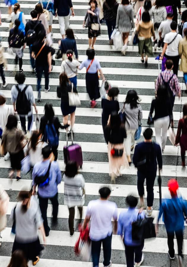21 lições para o século 21 Resumo