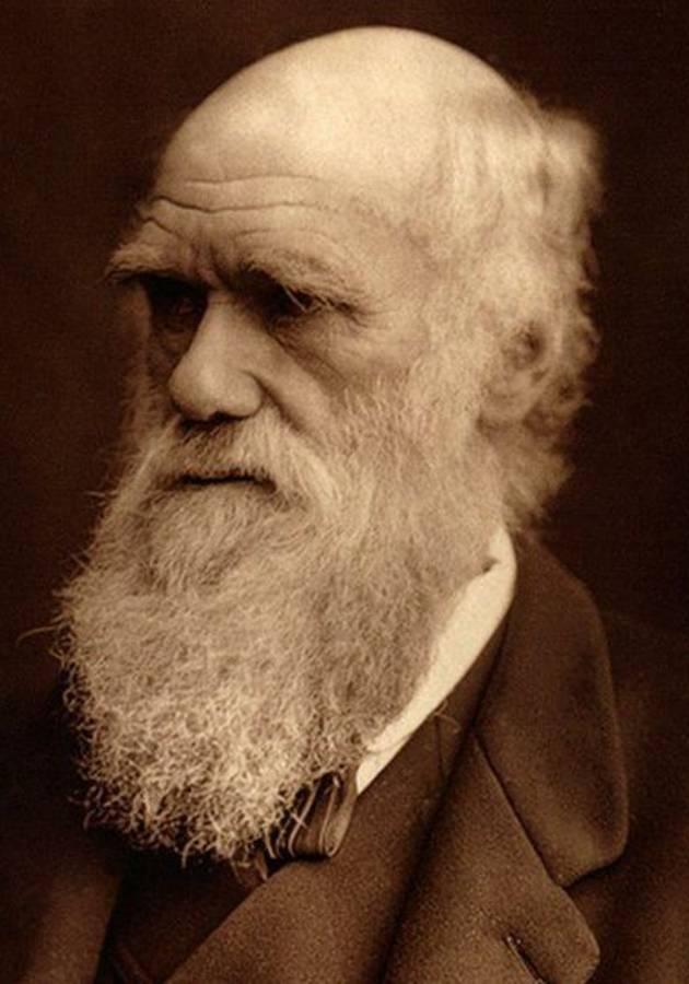La traición de Darwin Resumen