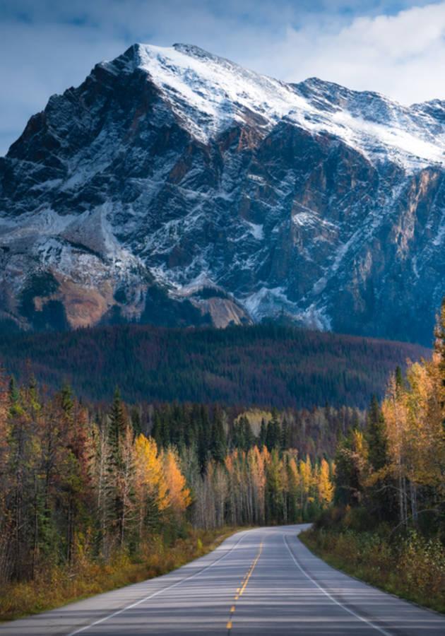 A montanha mágica Resumo