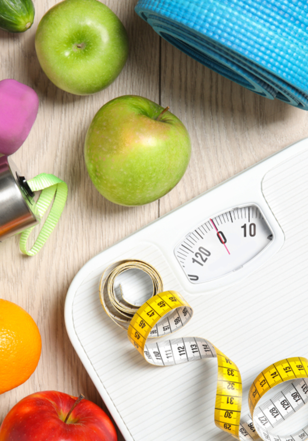 The Obesity Code Summary