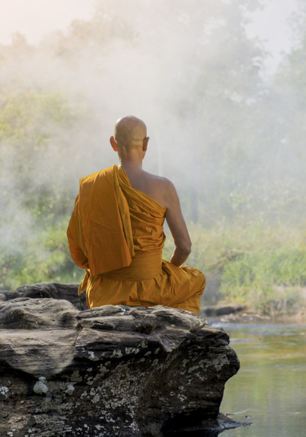 Think Like a Monk Summary