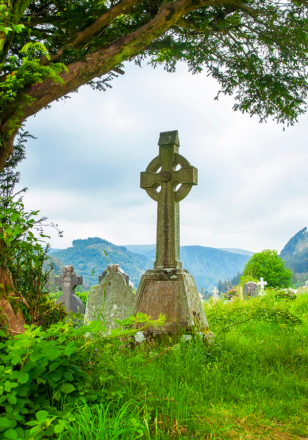 101 Things You Didn't Know About Irish History Summary