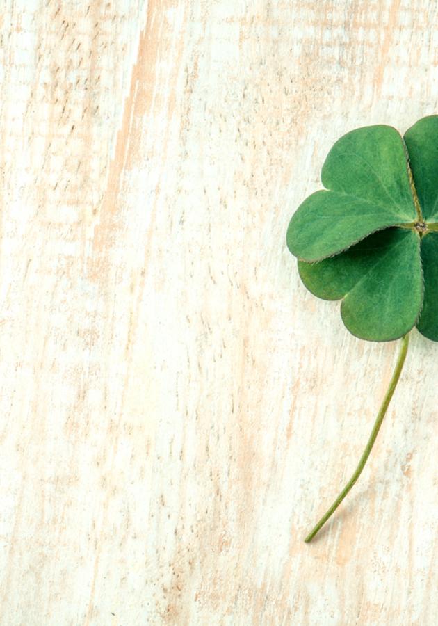 St. Patrick Summary