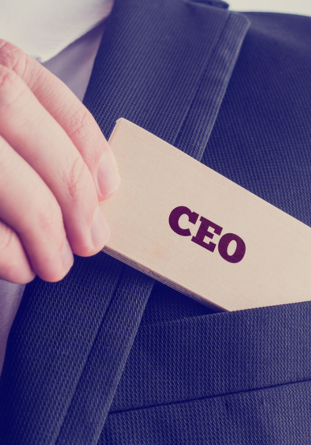 What the CEO Wants You To Know Summary