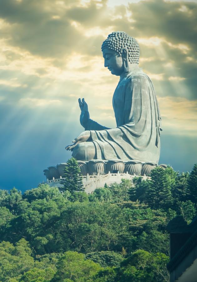 O cérebro de Buda Resumo