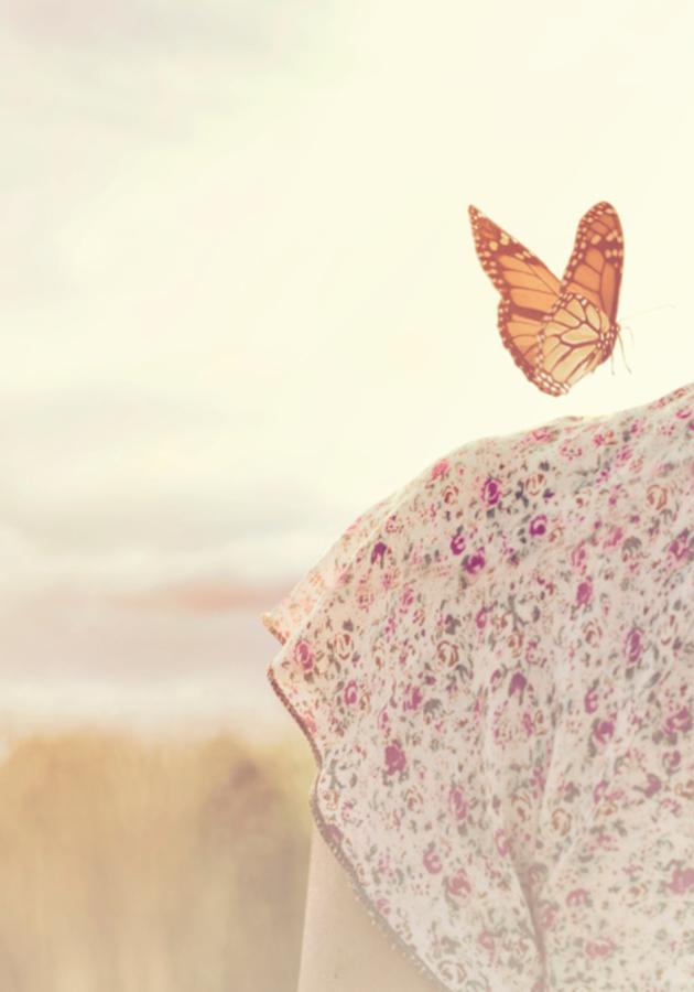 Love, Freedom, Aloneness Summary