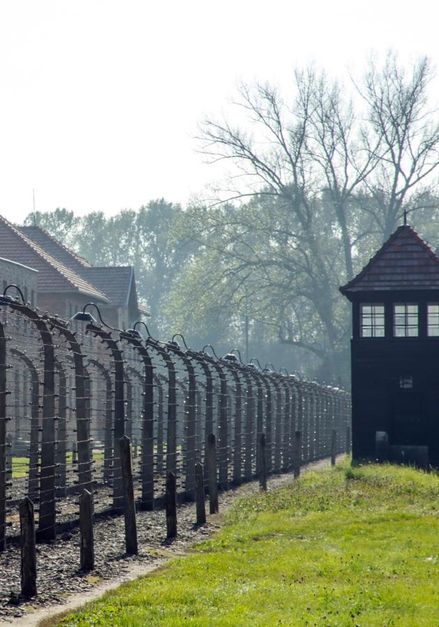 A bailarina de Auschwitz Resumo