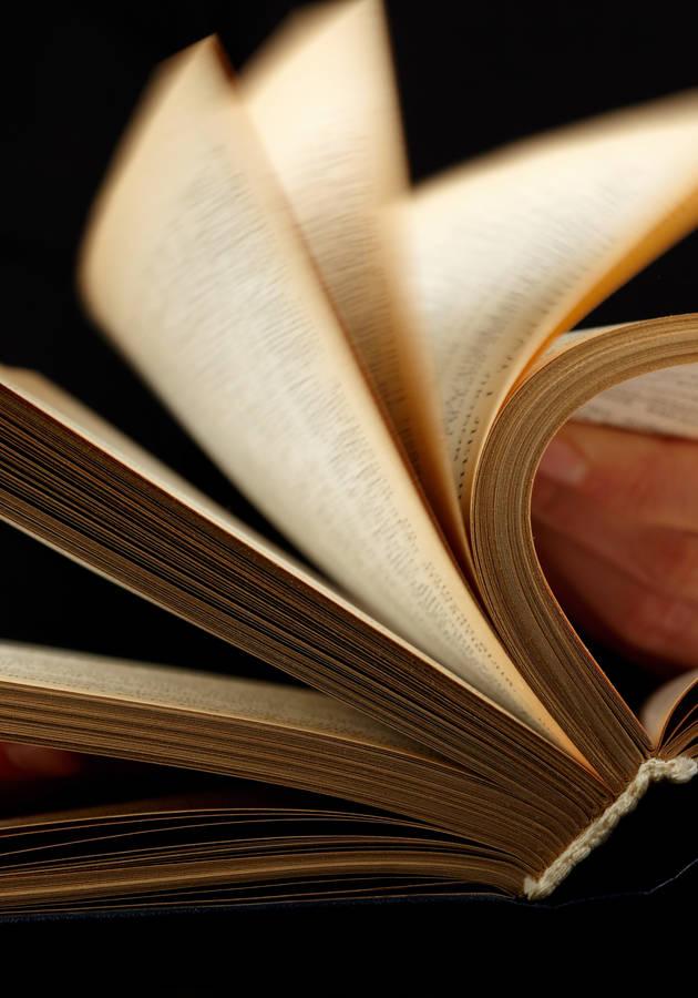 10 Days to Faster Reading Resumo